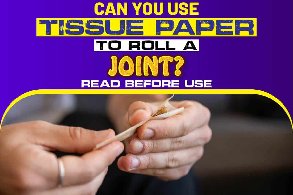 Can You Use Tissue Paper To Roll A Joint